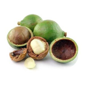 macadamia oil - buy online at vijayimpex.co.in