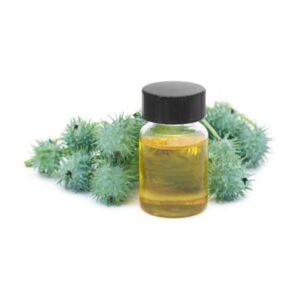 castor oil - buy online at vijayimpex.co.in
