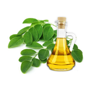 moringa oil - buy online at vijayimpex.co.in