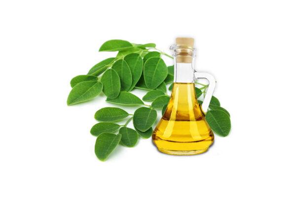 moringa oil - buy online at vijayimpex.co.in