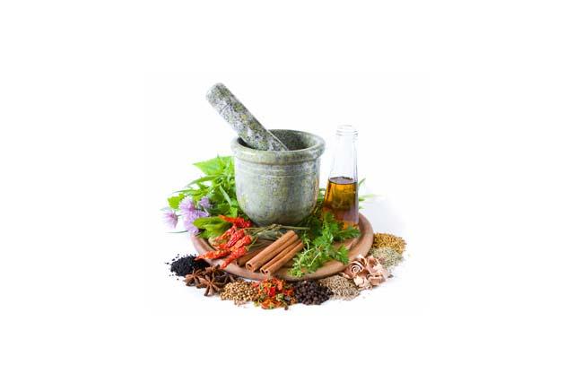 Herbal Shampoo Base (SLS/SLES Free)