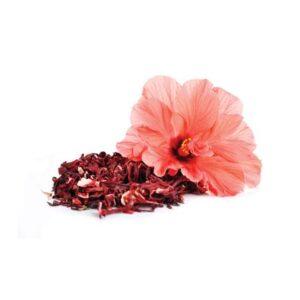 Hibiscus Extract (OS)