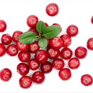 Premium Cranberry Lip Flavoring Oil