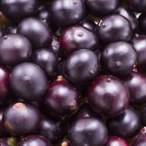 Acai Berry Extract - Liquid Form - Water Soluble