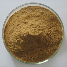 Dandelion-Powder