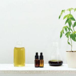 Beracare CBA - Exotic Oil - CANNABINOID OIL - Natural Alternative of CBD Oil