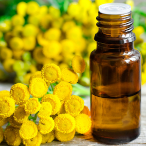 Blue Tansy Essential Oil - 10 ML Pack
